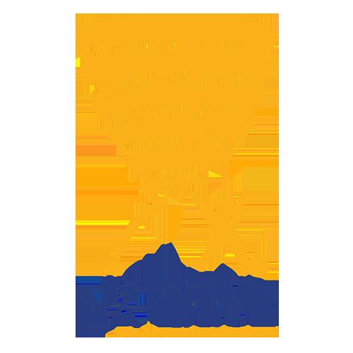 French Coupe de la Ligue