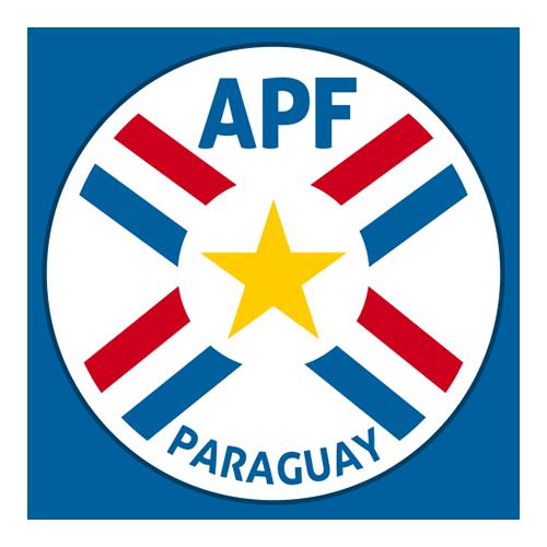 Paraguayan Primera Division