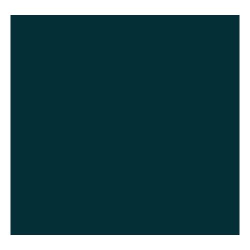 Dutch KNVB Beker