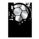 Recopa Sudamericana