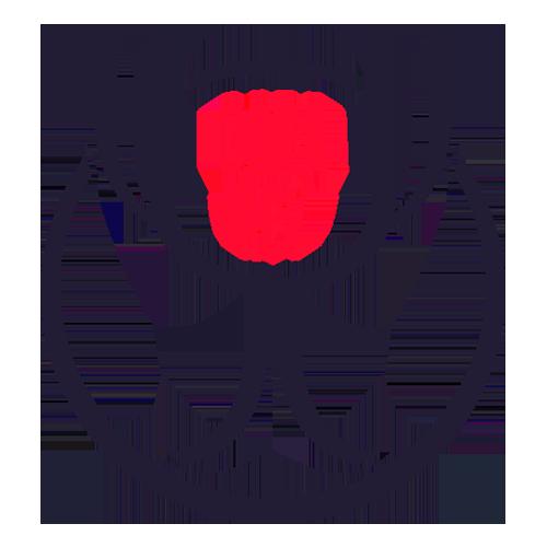 Spanish Copa del Rey