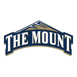 Mt. St. Mary's Mountaineers