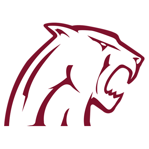Concord Mountain Lions
