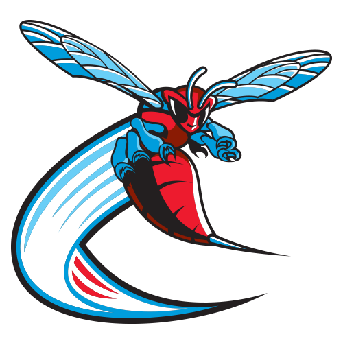 Delaware State Lady Hornets