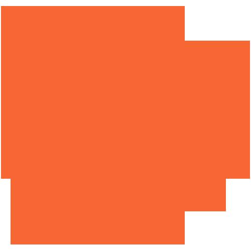 Clemson Lady Tigers