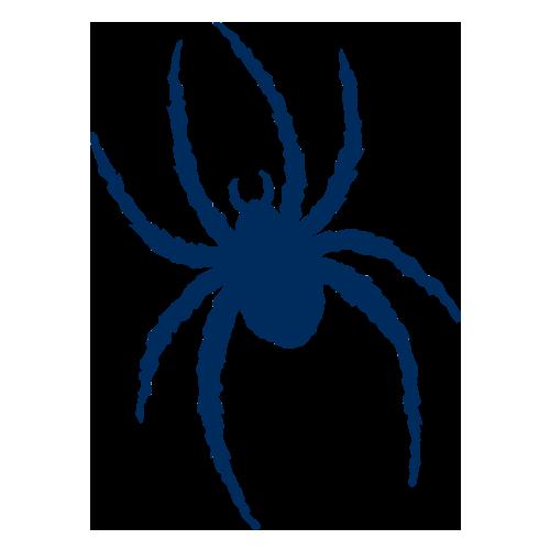 Richmond Spiders Roster Espn