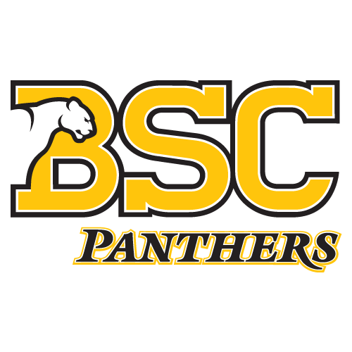 Birmingham-Southern Panthers