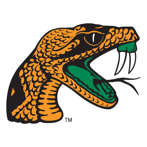Florida A&M Lady Rattlers