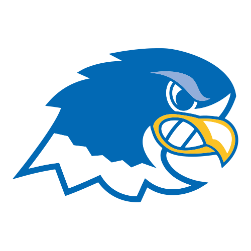 Notre Dame College Blue Falcons