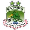 CD Dragon Logo