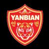 Yanbian Fude FC Logo