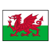 Wales U20 Logo