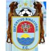 Deportivo Binacional Logo