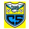 Carlos Stein Logo