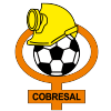 Cobresal Logo