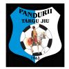 Pandurii Targu-Jiu Logo