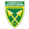 Golden Arrows Logo