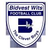 Bidvest Wits Logo