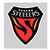 Pohang Steelers Logo