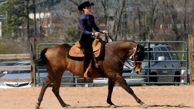 No 4 Auburn Equestrian Team Defeats Ut Martin In Season