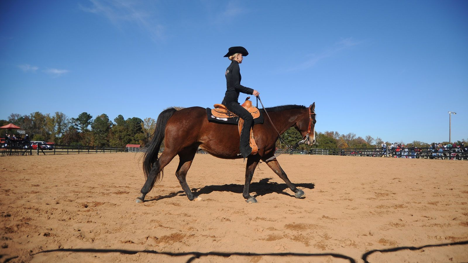 Sec Competition Begins This Week For Equestrian Teams