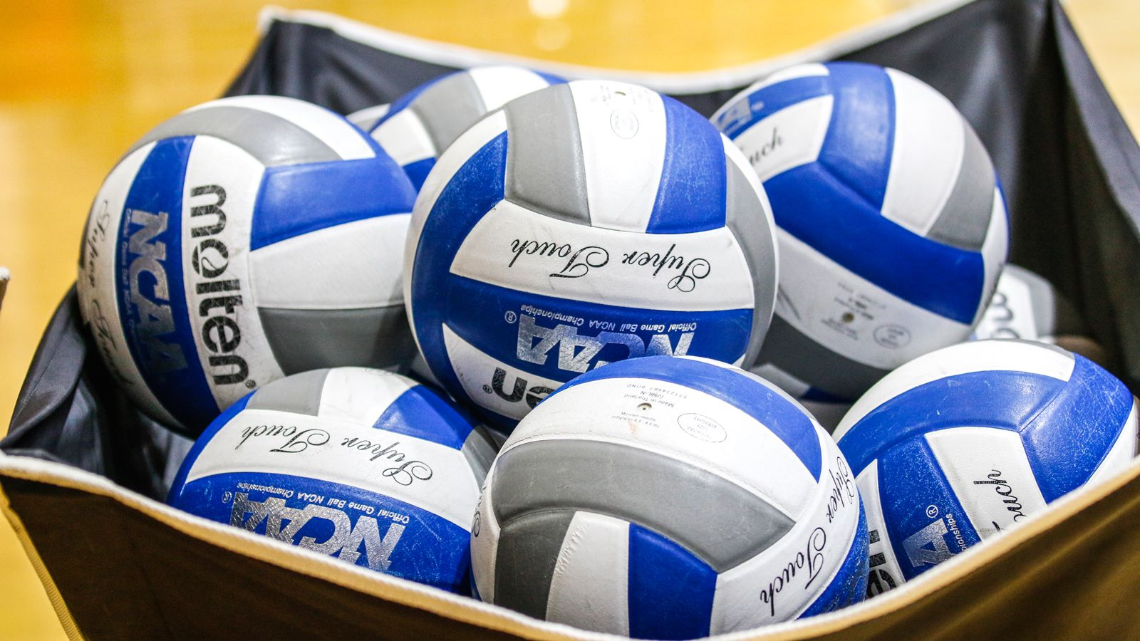 Ole Miss-LSU Volleyball Matches Postponed