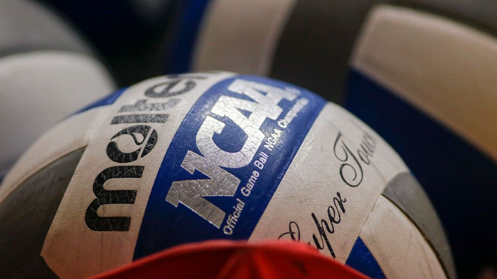 2018 SEC Volleyball Community Service Team announced
