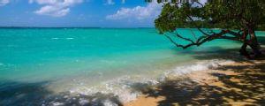 Vanuatu, de Oceanía, busca técnico para su selección en Internet