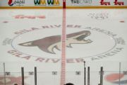 Meruelo to take over Coyotes as 1st Latino owner