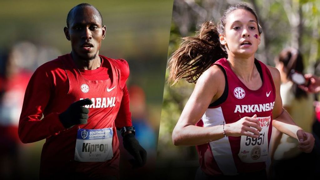2019 SEC Cross Country Awards announced