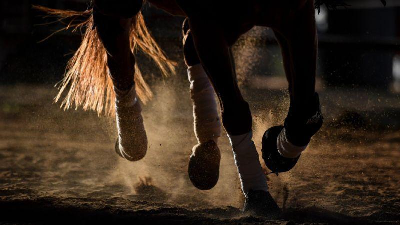 2021 SEC Fall Equestrian Schedules Announced