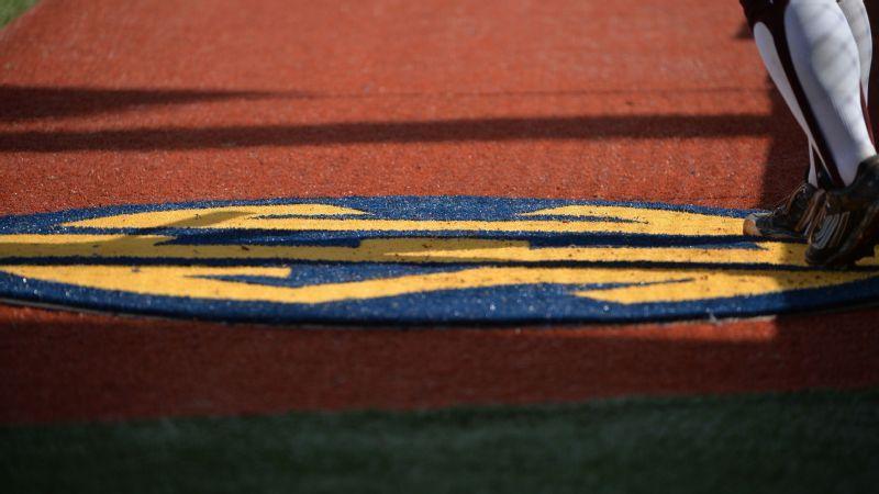 2020 SEC softball Community Service Team announced