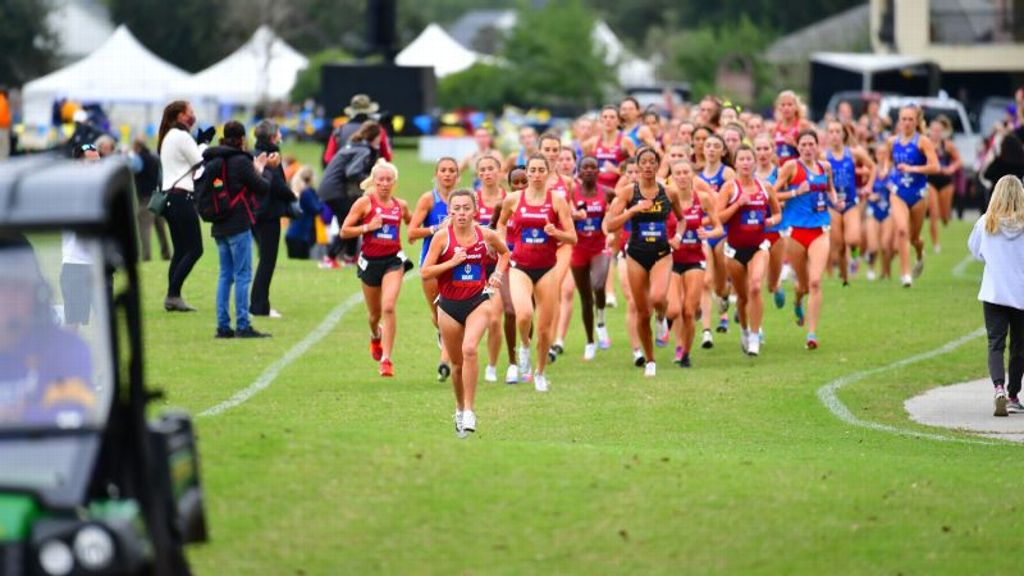 SEC runners set for NCAA Cross Country Championships