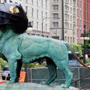 Art loves the Blackhawks
