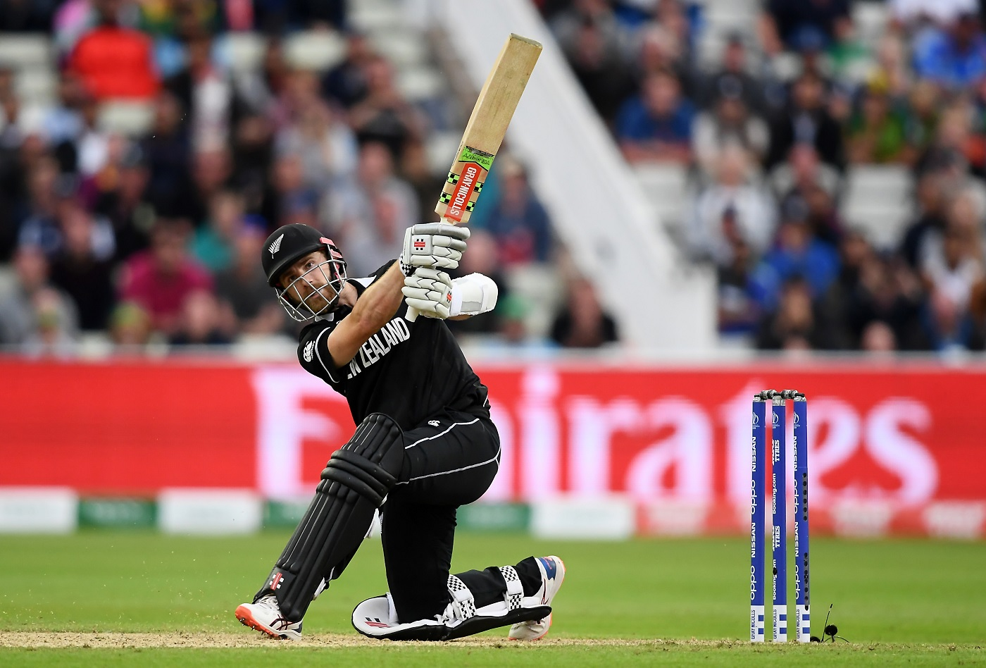 Live Report - New Zealand v South Africa