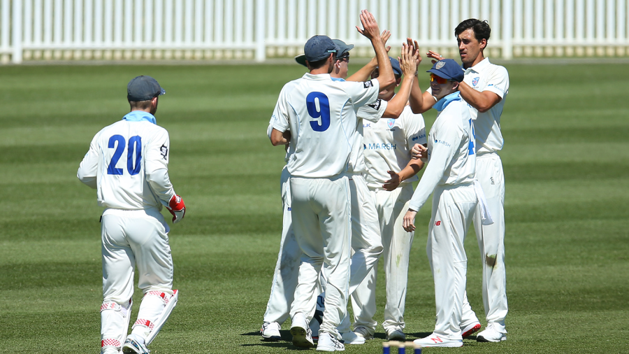 Starc helps New South Wales earn reward for the toil