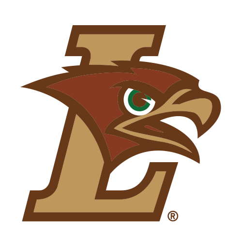 Mountain Hawks