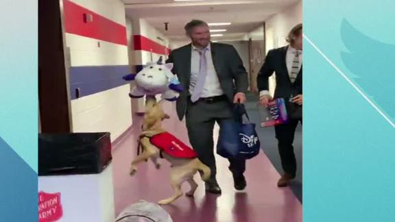 Caps' dog reunited with Ovi