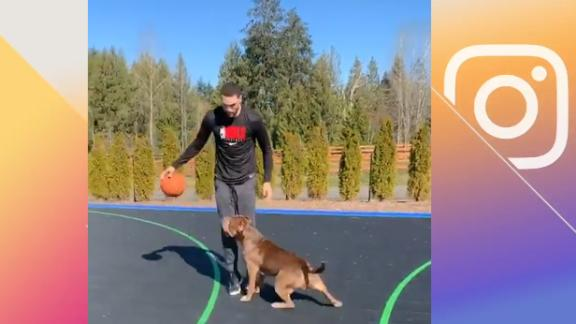 Zach LaVine plays 1-on-1 vs. his dog