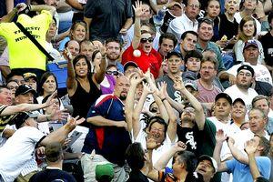 Foul Ball Fans