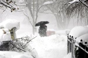 Washington Blizzard
