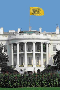 White House Towel