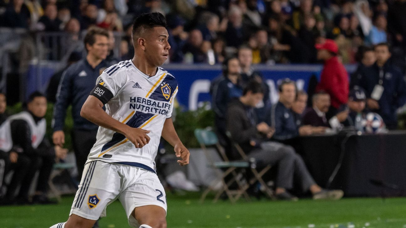 Sixteen-year-old phenom Efrain Alvarez's electric 30-minute debut rallied the LA Galaxy and hinted at his enormous future.