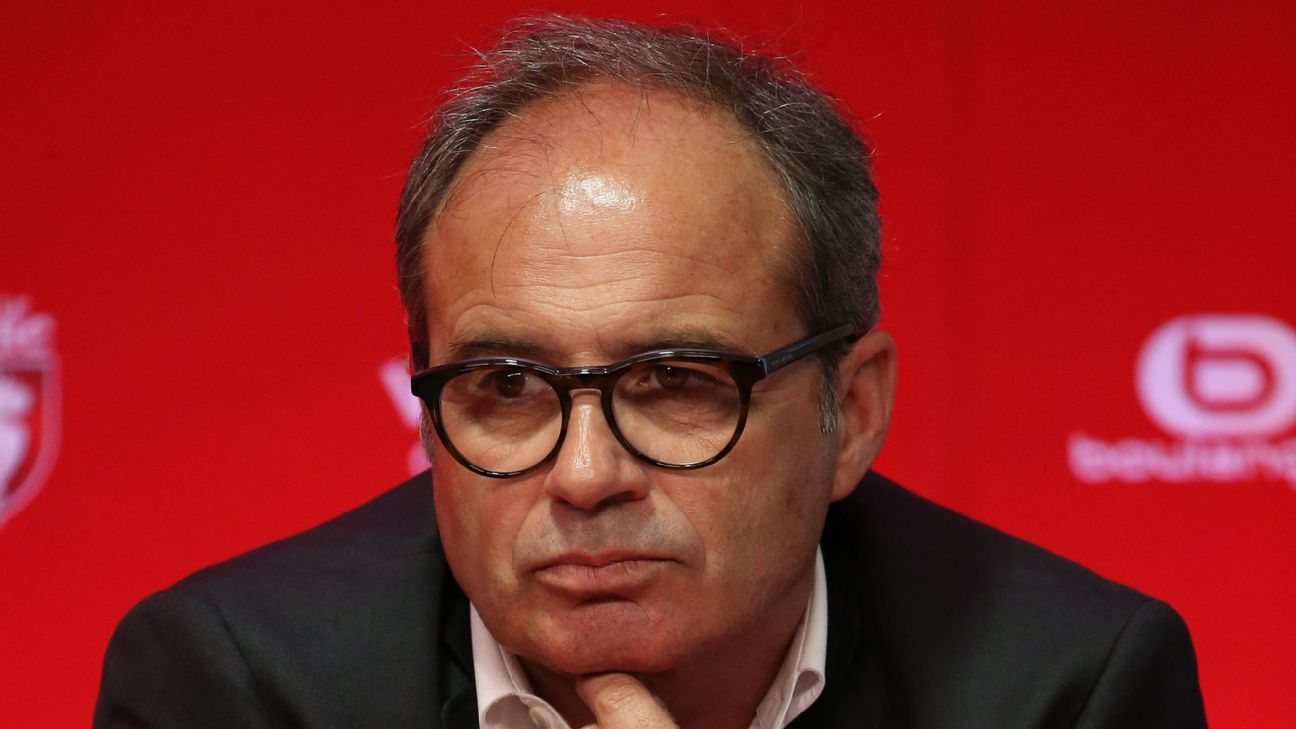 Lille sporting director Luis Campos