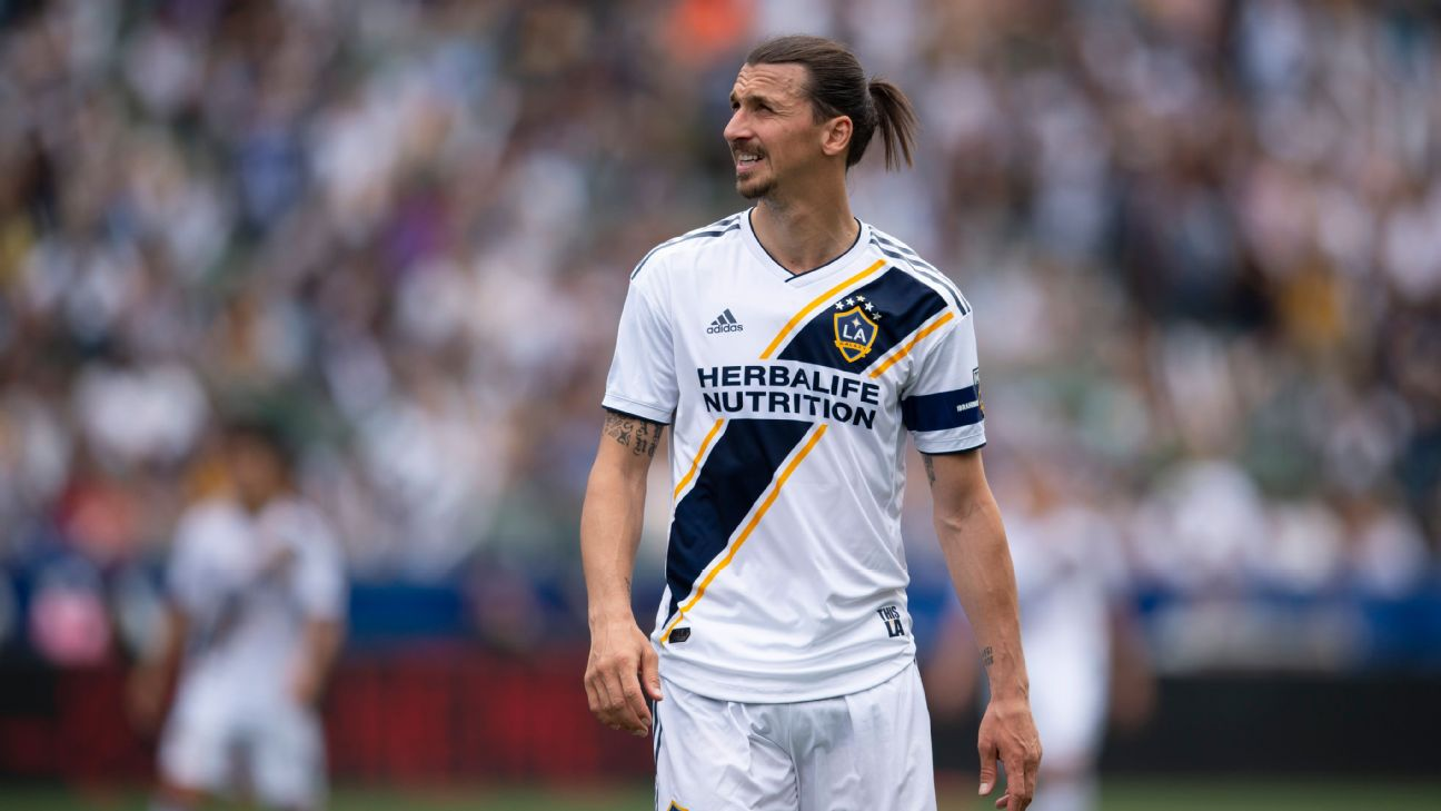 Zlatan Ibrahimovic was suspended two matches for an incident with NYCFC keeper Sean Johnson.