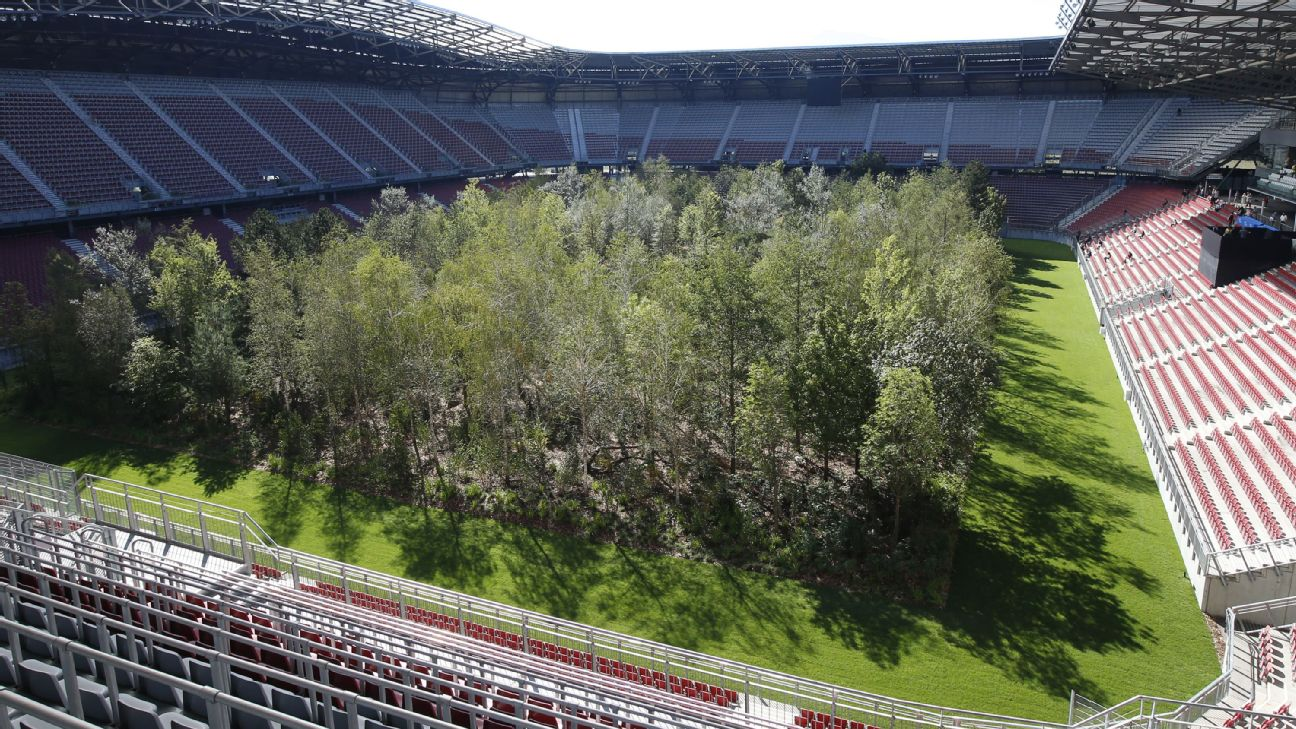 Soccer stadium pitch becomes 300-tree forest 1
