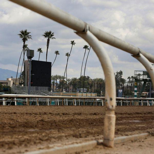 Read: Third horse dies in three-day run at Santa Anita