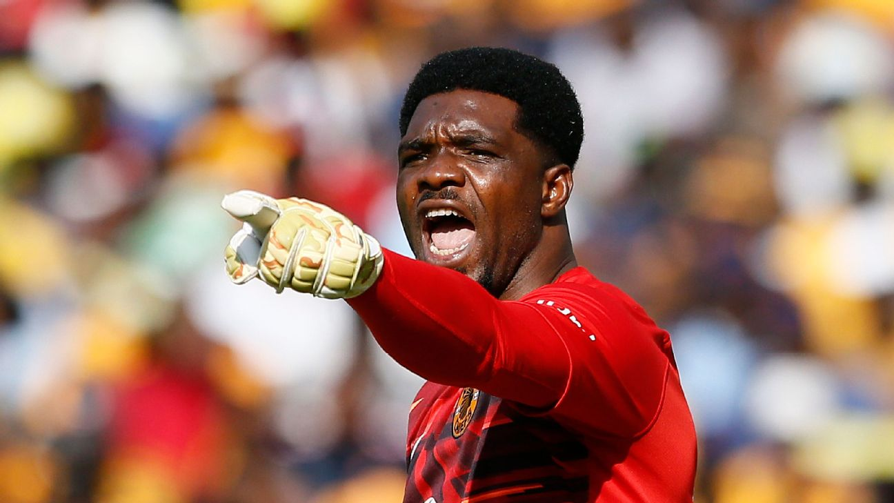 Kaizer Chiefs goalkeeper Daniel Akpeyi is the current Nigeria GK of the year, and is one a of a number of top international stoppers in South Africa's PSL.