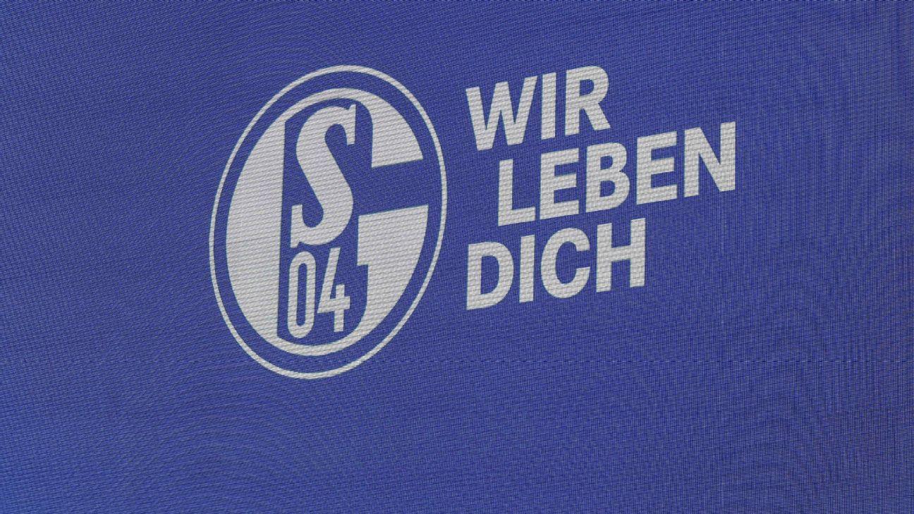 Logo of FC Schalke