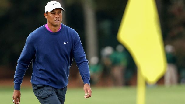 Tiger recovering from surgery for 'significant' leg injuries